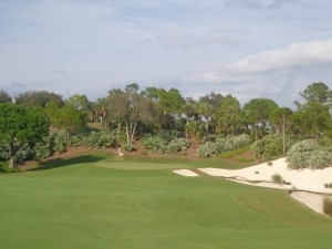 DSC03783 Calusa Pines par 4 15th DS